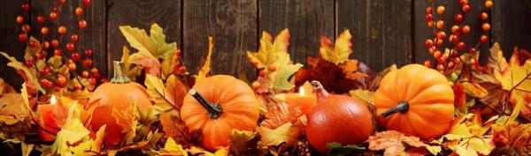 autumn-facts.jpg