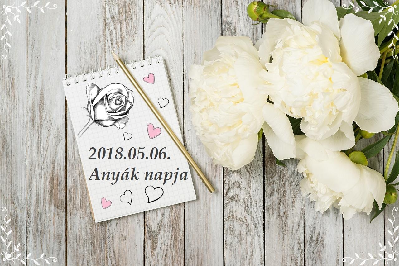 anyk_napja_j.jpg